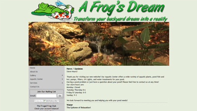 A Frogs Dream